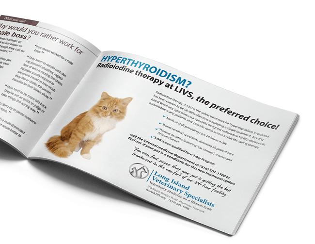 Long Island Veterinary Specialists